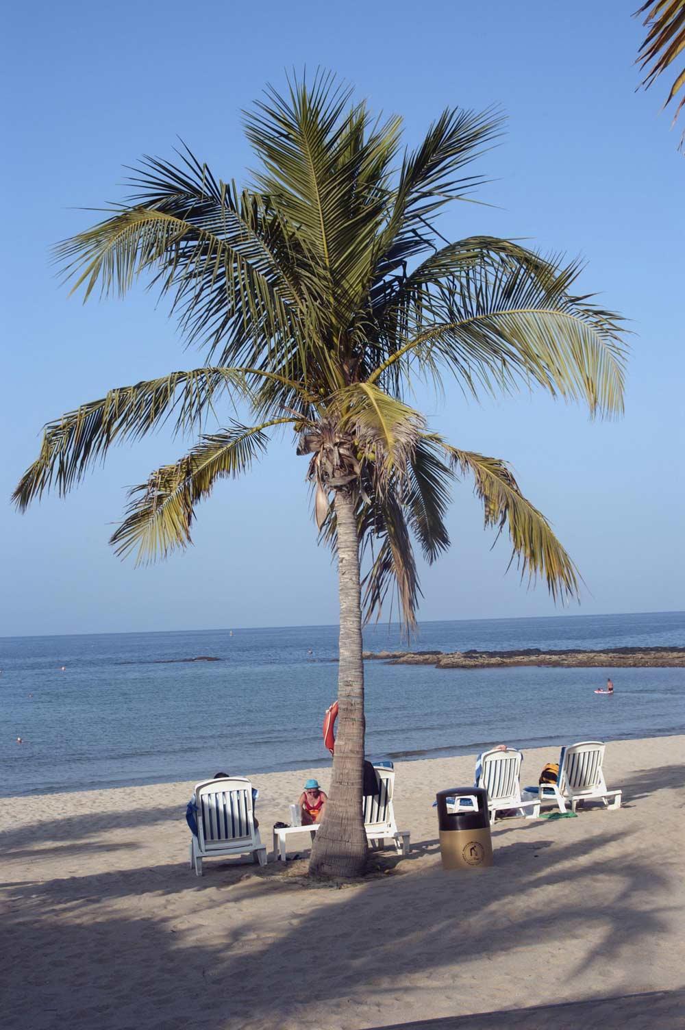Oman - Qurum beach