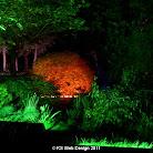 lights 2006 CIMG0006.JPG