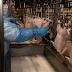 Maior do Brasil, Paraná produziu 1,5 milhão de toneladas de carne no primeiro trimestre