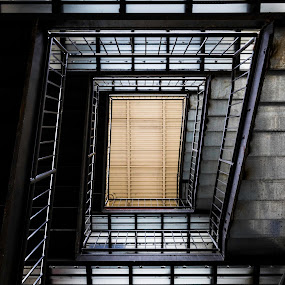 Stairs by Caleb Daniel - Buildings & Architecture Other Interior ( stairs, metal, color, architecture, light,  )