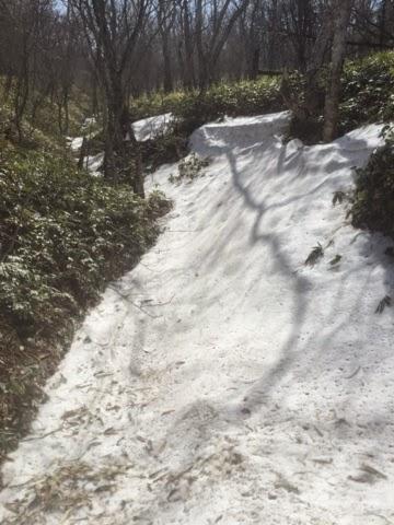 鳥居峠から小沼への登山道には残雪あり