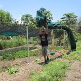 Overkapping tuin
