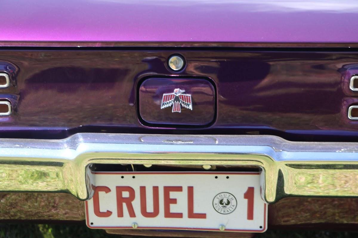 Pontiac GTO - Cruel 1 (15).jpg