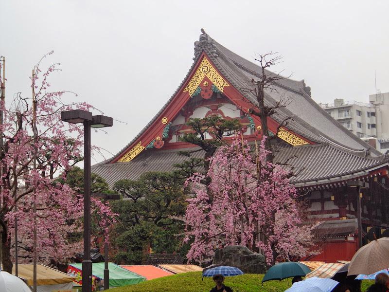 2014 Japan - Dag 5 - marjolein-DSC03558-0044.JPG