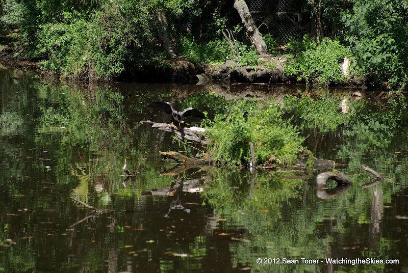 04-07-12 Homosassa Springs State Park - IMGP4525.JPG