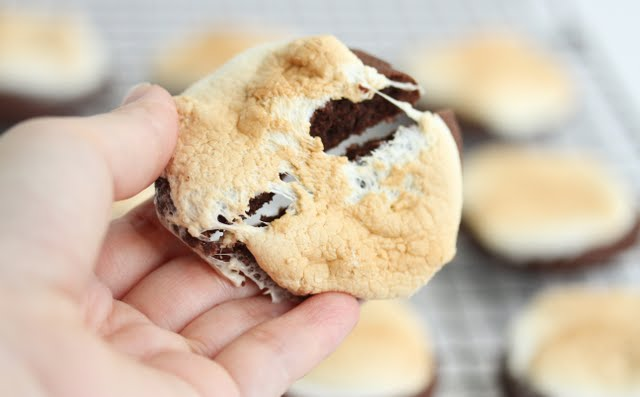 close-up photo of a hot chocolate cookie