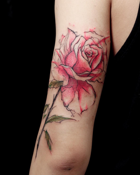 esta_linda_rosa