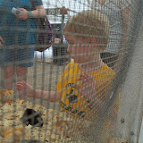 Fort Bend County Fair 2015 - 100_0316.JPG
