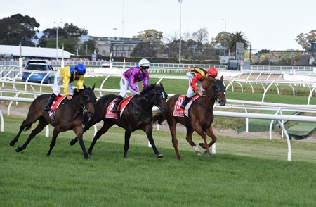 caulfield guineas_finish 9