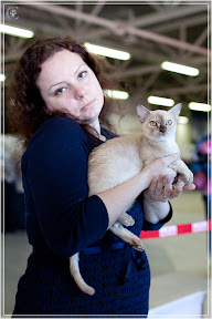 cats-show-25-03-2012-fife-spb-www.coonplanet.ru-019.jpg