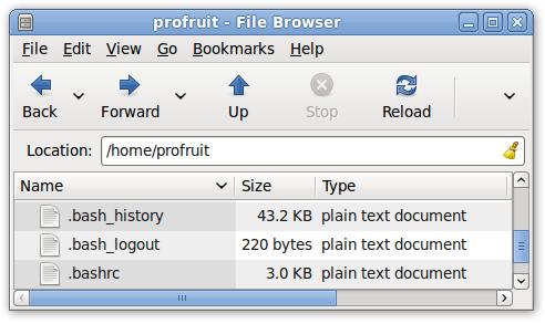 bash-файлове