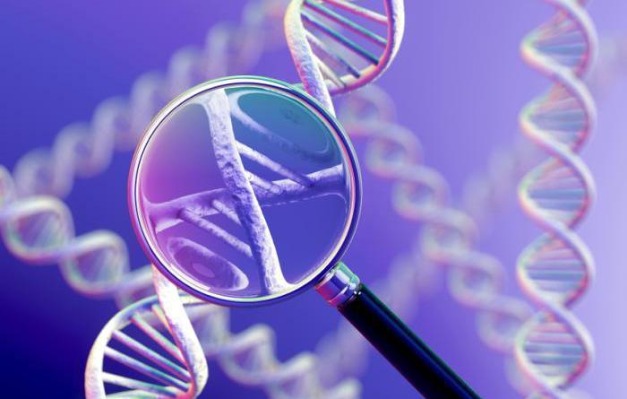 Gene signature of uterus tied to recurrent IVF failure