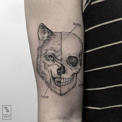 esta_brilhante_lobisomem_tatuagem_de_caveira