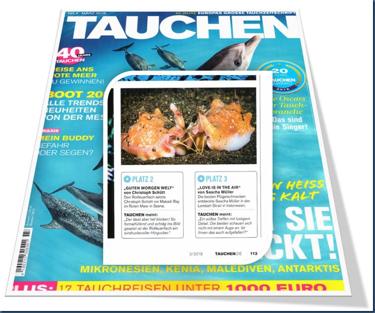 3. Platz Zeitschrift Tauchen Ausgabe März 2018