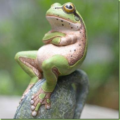 skeptical frog