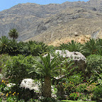 Colca Canyon - Oase Paraiso