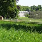 Parc de la Maison de Chateaubriand : brebis et grande prairie