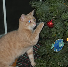 Photo: Helping take the ornaments off as soon as we put them on.