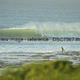 _DSC7367.thumb.jpg