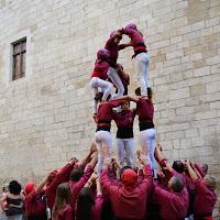 Exhibició Mostra Cultura Catalana 25-04-15 - IMG_9757.JPG