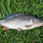 20160717_Fishing_Zhalianka_025.jpg