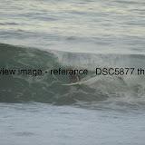 _DSC5877.thumb.jpg