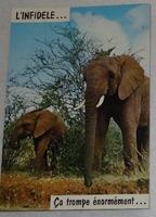 358 11-carte postale