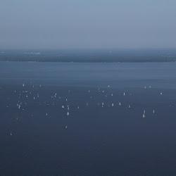 Dauphin Island Race 2013 040