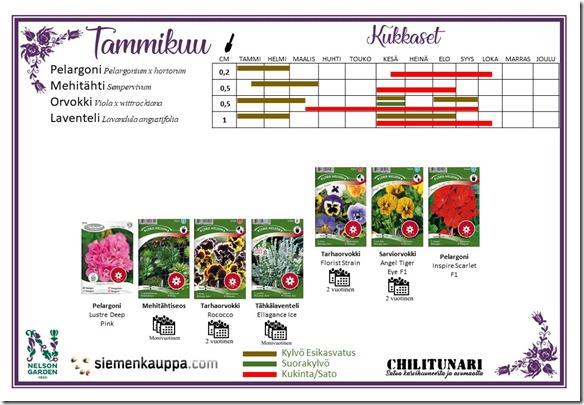 Tammikuu Kukkaset