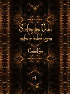 Stefys dys Dyan Cover