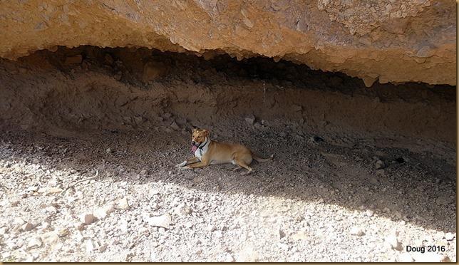 Yuma in cave