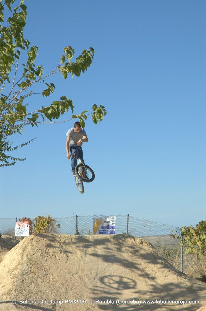 Ballena Dirt Jump BMX 2009 - BMX_09_0044.jpg