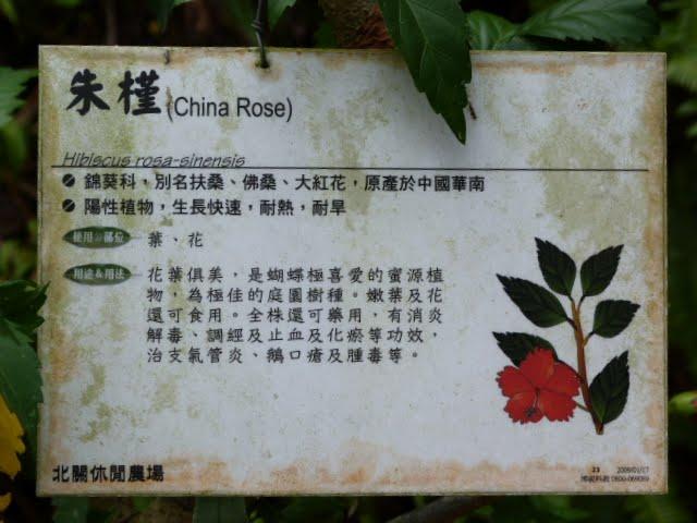 TAIWAN.Toucheng .musée du crabe situé au Pei Kan Resort, surfers,maison Japonaise du chef de gare - P1080746.JPG
