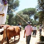 CaminandoalRocio2011_486.JPG