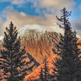 Chugach Peaks by Patricia Phillips - Landscapes Mountains & Hills ( alaska mountains autumn )