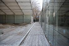 skatepark18-111207_3