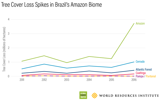 Tree cover loss in Brazil's Amazon biome, 2011-2016. Graphic: Global Forest Watch