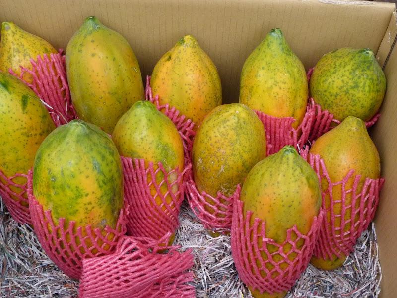 papayes