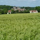 DSC_0001Blés_et_village Montgeroult_au_loin.JPG