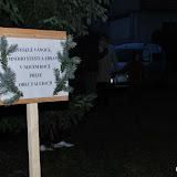 Vánoční strom 2009