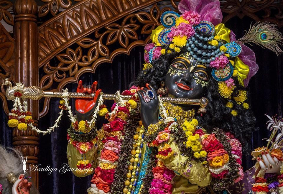ISKCON Mayapur Deity Darshan 02 Feb 2016 (7)