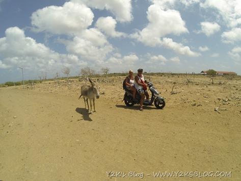 Lori e Carlo - Santuario Asinelli - Bonaire