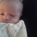 Meet Marshall! - IMG_20120531_141229.jpg
