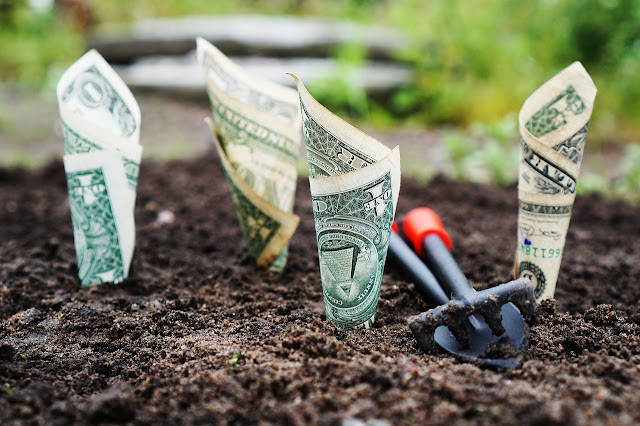 15 ways to make money online | Make Money in 2021