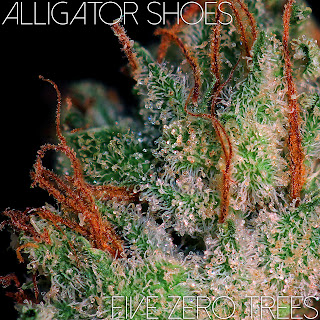 Alligator Shoes Macro 1