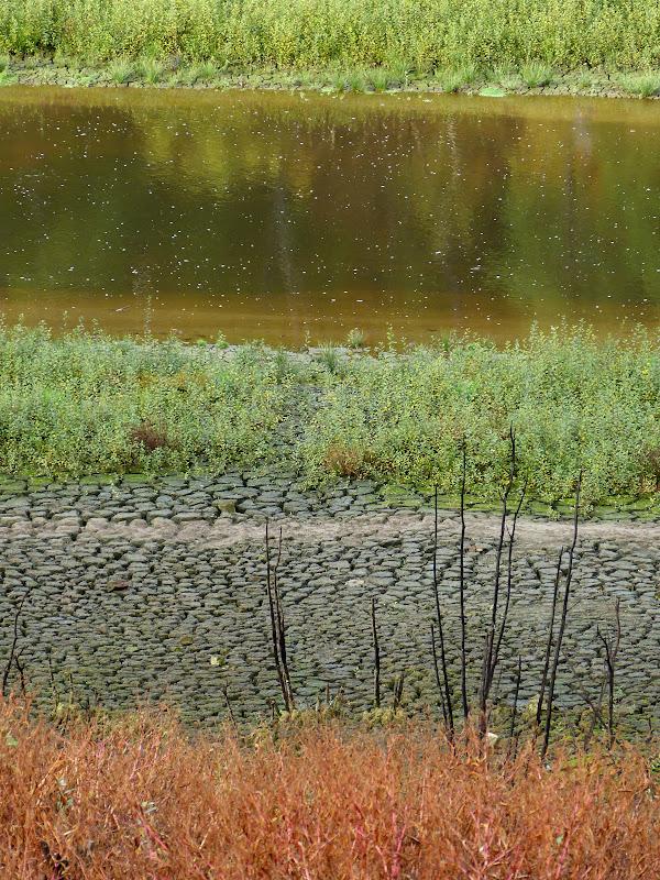 Au fond du lac de Guerlédan P1310302