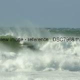 _DSC7968.thumb.jpg