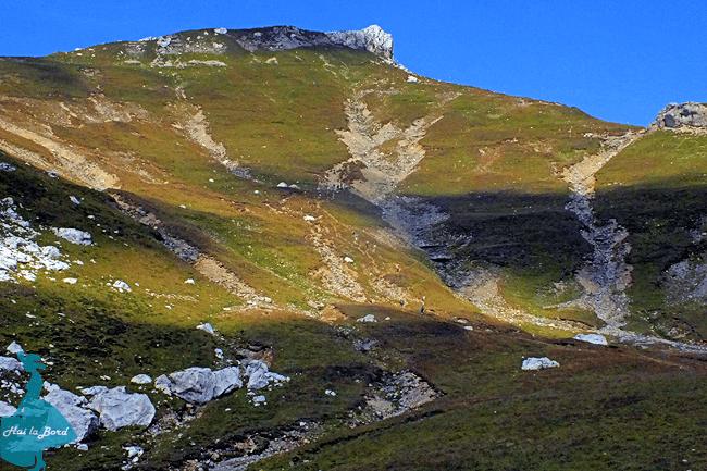 valea ialomitei mecetul turcesc