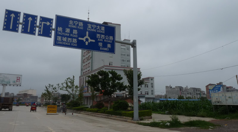 Chine.Yunnan Wen shan et BA MEI 1 - P1260851.JPG