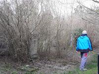 5 - V. A terület inkább egy erdős részhez hasonlított a takarítás előtt.jpg